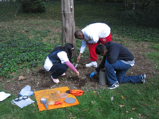 Green Horizon students hunt for insects and learn about entomology with the USDA Forest Service.