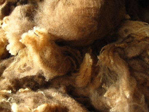 Merino fleece