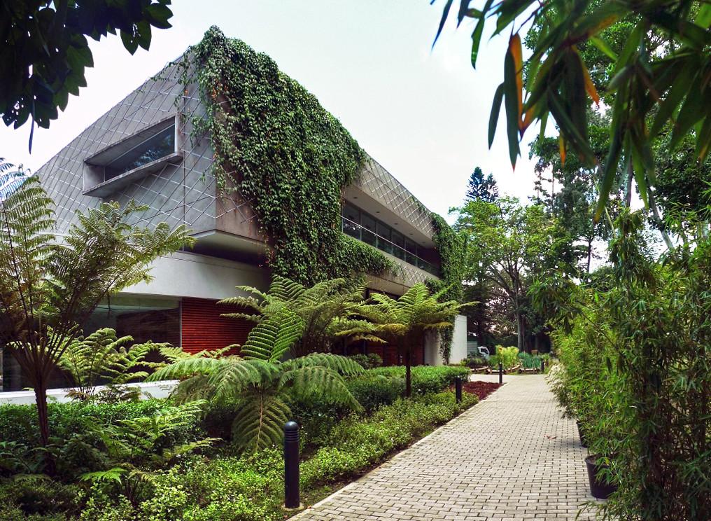 Jardin botanico medellin imagenes images - Cosas para el jardin ...