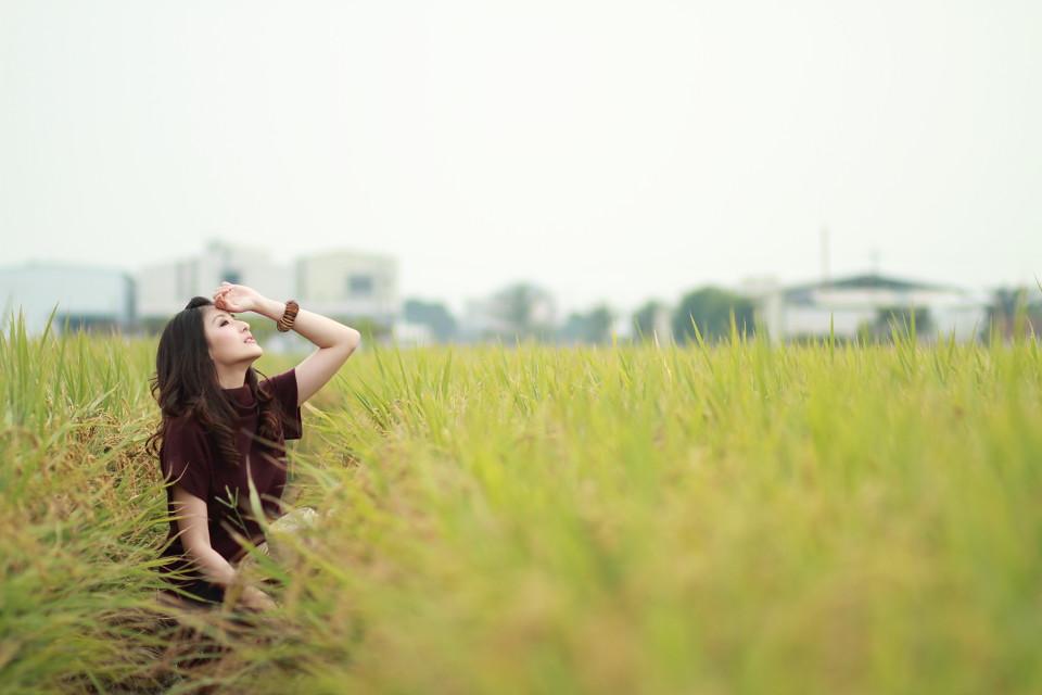 稻 * 香