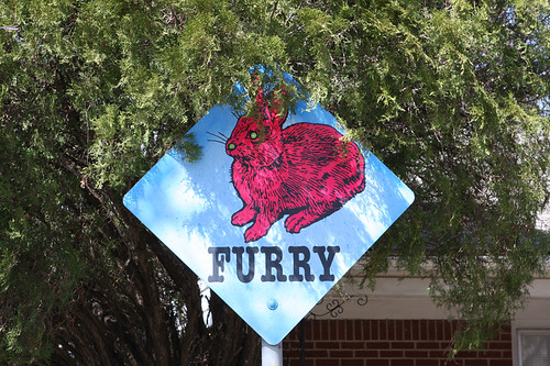 Amarillo Sign - Furry