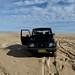 Sand Dunes - Newcastle