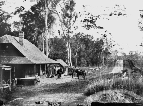 horses photographer postoffice queensland hotels statelibraryofqueensland slq shingleroofs williamboag chimneysn