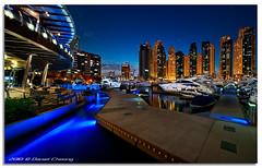 Dubai Marina Blue