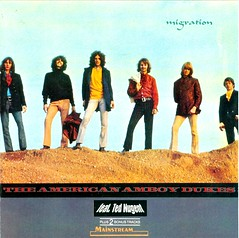 CDs - Amboy Dukes, The - feat. Ted Nugent -1967 to 1975 - a set on