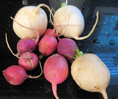 radishes and japanese turnips