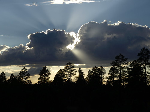 landscape sunset arizona pinetop pinetoparizona whitemountains woodlandlake pinetoplakeside nature crepuscularrays sundrawingwater sunrays riparian riparianzone riparianarea riparianhabitat