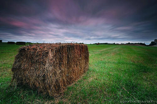 longexposure sky field clouds landscape nikon maryland row filter hay 1224mm hitech d5000 mygearandmepremium