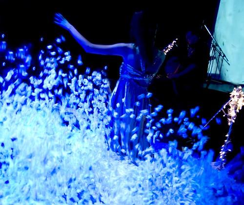 Multi_02_2010> Letuce + Paulo Camacho