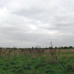 Tottenham Marshes - looking northward