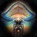 Mushroom Spirit by Sea Moon