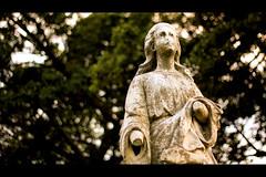7.28.2010 <woodland cemetery> 195/365