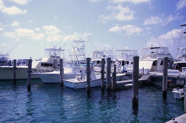Sailfish marina singer island flickr photo sharing