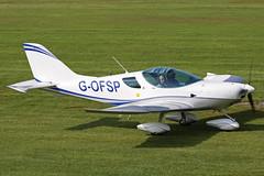 G-OFSP