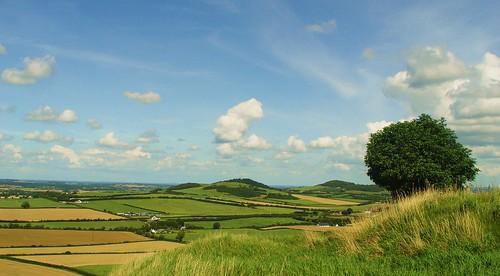 hills carlow