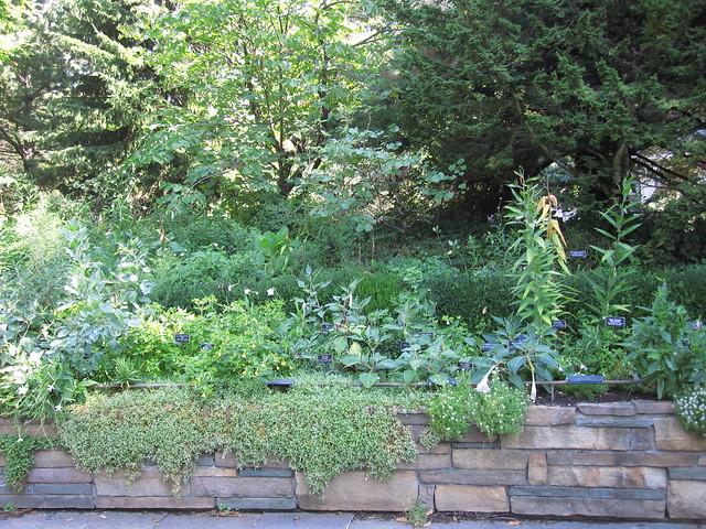 The Fragrance Garden. Photo by Rebecca Bullene.