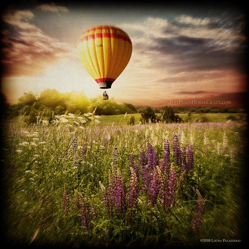 photomanipulation sunrise hotair balloon meadow makeitinteresting artistictreasurechest magicunicornverybest thelittlebookoftreasures