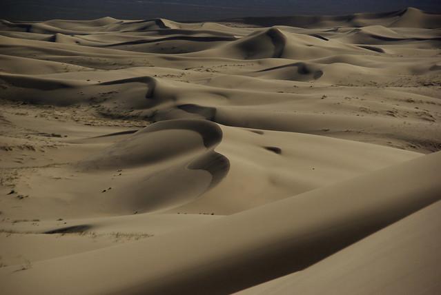 Dune di Khongoryn Els 12