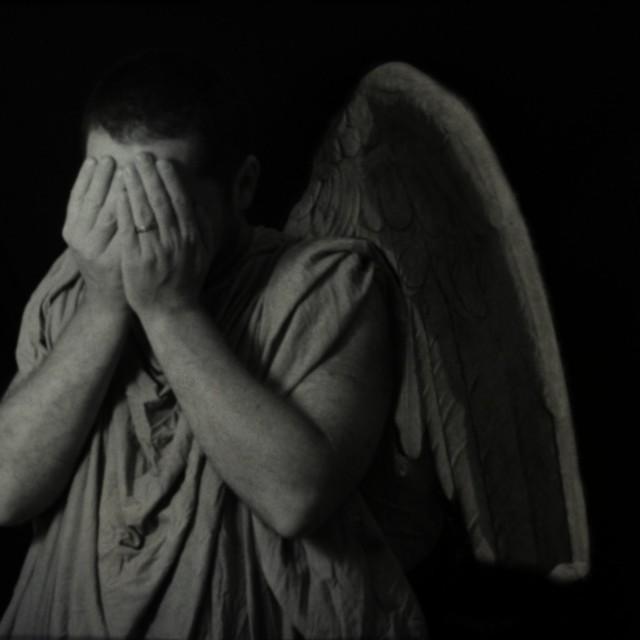 Weeping Angels Cat Video