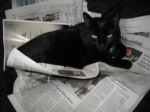 Haruki and the Sunday New York Times (2)