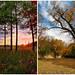 Minnesota Autumn by -Chad Johnson