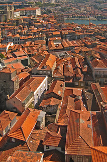 Portugal - Porto - View from Torre dos Clérigos