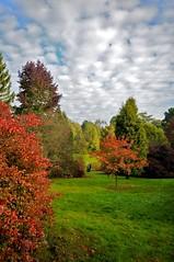 Sheffield Park & Garden 22-10-2010