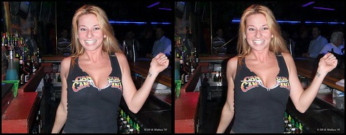 portrait woman hot sexy smile lady female bar club stereoscopic stereogram 3d crosseye md pretty gorgeous brian chest maryland stereo blonde attractive wallace stereopair cleavage hanover sidebyside bartender busty built stacked ashlee stereoscopy stereographic freeview crossview mixologist brianwallace xview stereoimage xeye stereopicture