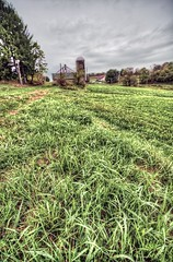 Grass and some barn-keh HDR