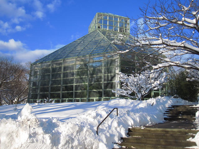 The exterior of the Warm Temperate Pavilion with lots of snow. Photo by Rebecca Bullene.
