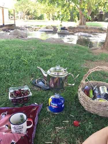 Tea by the Creek