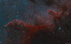 The Cygnus Wall in the North America Nebula