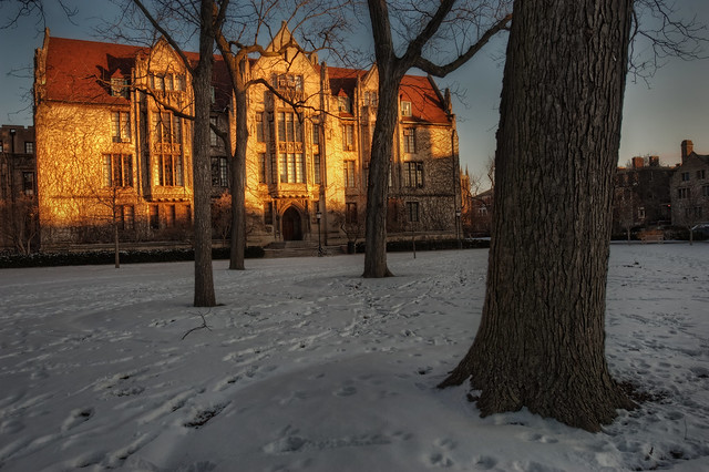 First light on Eckhart Hall, University of Chicago, January 2010