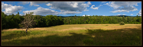 landscape vermont august fields rochestervt