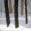 10 Snow Flurries 3