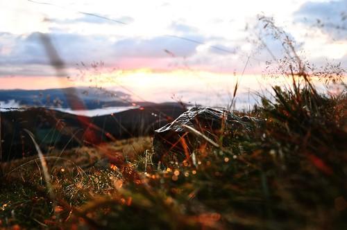 sky sun mountain wet grass stone clouds sunrise nikon bokeh nikkor d90 belchen bokehballs 18105mm nikond90 nikongraphy