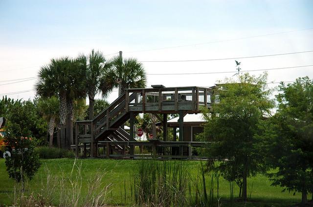 Bluegill trail starts in palm beach gardens sandhill cr - Weather palm beach gardens florida ...