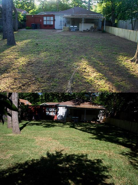 Backyard Turf Installation : Before & After, Backyard Grass Install  Flickr  Photo Sharing!