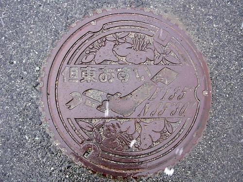 Tanto Hyogo,manhole cover(兵庫県但東町のマンホール)