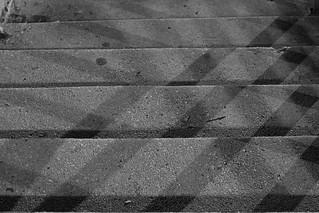 Shadows on Steps 3