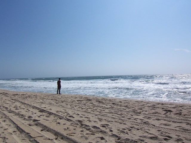 ian contemplates the ocean