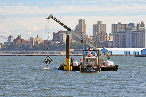 Artificial oyster reef creation off Governors Island