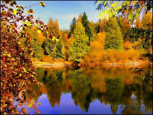autumn lake canada fall water colors landscape britishcolumbia autumncolors hdr vancouverarea arianwen heywardlake