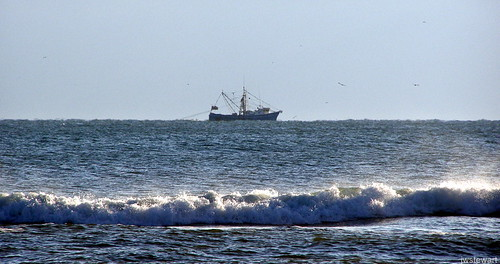 Africa: International Guidelines | Illegal Fishing