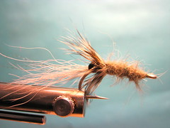 Elk River Estuary Shrimp Fly Jay Nicholas Chinook Salmon Pattern