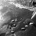 ohio has beach rocks by julescapules