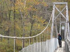 park(0.0), suspension bridge(1.0), canopy walkway(1.0), rope bridge(1.0), bridge(1.0),