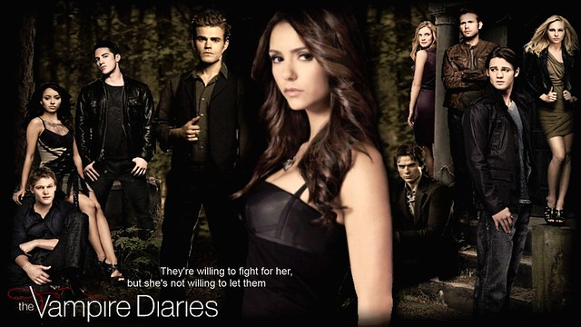 "Vampire Diaries ""Willing to Fight"" Wallpaper"