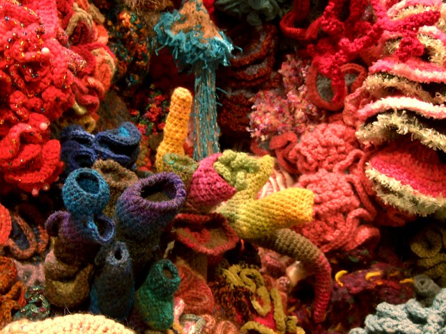 Crochet Coral Reef : Crochet Coral Reef Flickr - Photo Sharing!