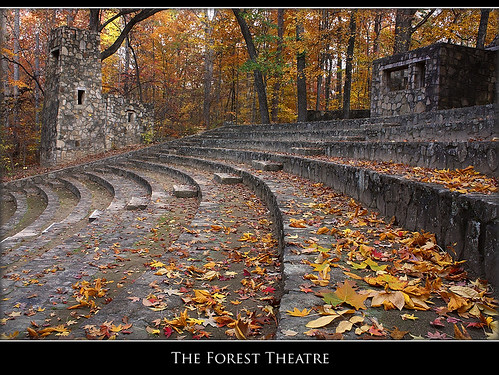 november autumn fall leaves theater explore unc ampitheater uncchapelhill outdoortheater explored foresttheatre theuniversityofnorthcarolina photocontestfall10
